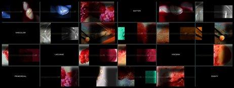 Professor uses art to promote scientific research