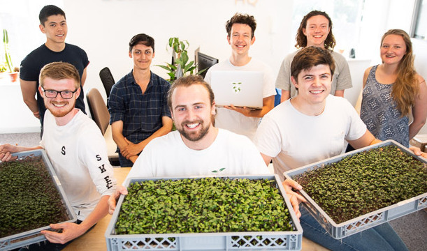 LettUs Grow and Octopus lighten energy costs for vertical farms