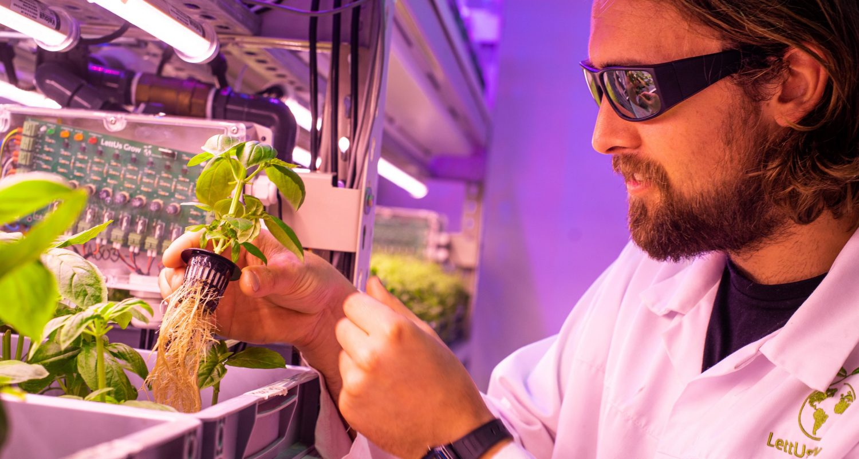 LettUs Grow raises £2.35m as demand for vertical farming technology rises